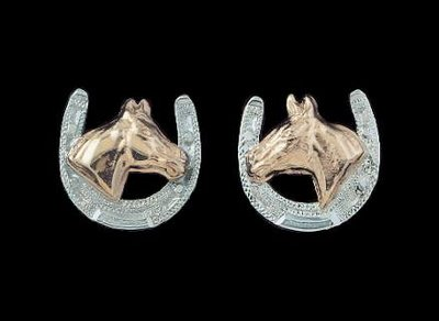 Bar-V Ranch  Earrings -Silver Horseshoe and Jewelers Bronze Horse Head