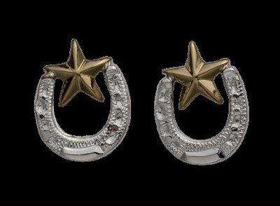 Bar-V Ranch  Earrings -Silver Horseshoe, Jewelers Bronze Star