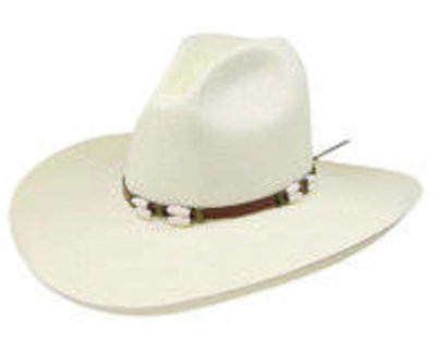 Resistol Cisco Straw Hat  6X