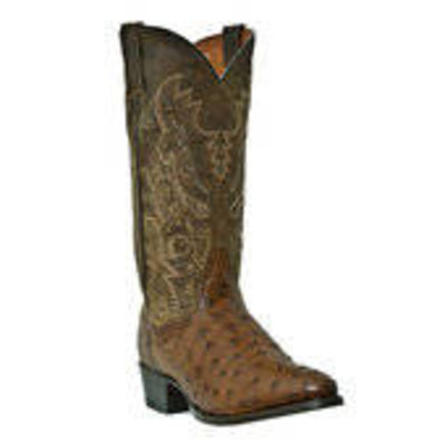 Dan Post Tempe  Full Quill Ostrich Foot DP2323